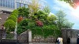 白云区城市提升改造工程项目绿化施工招标工程